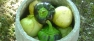 Tomatillos and Mixed Peppers